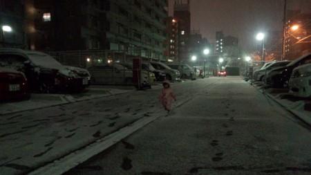 20140207_yuki_03