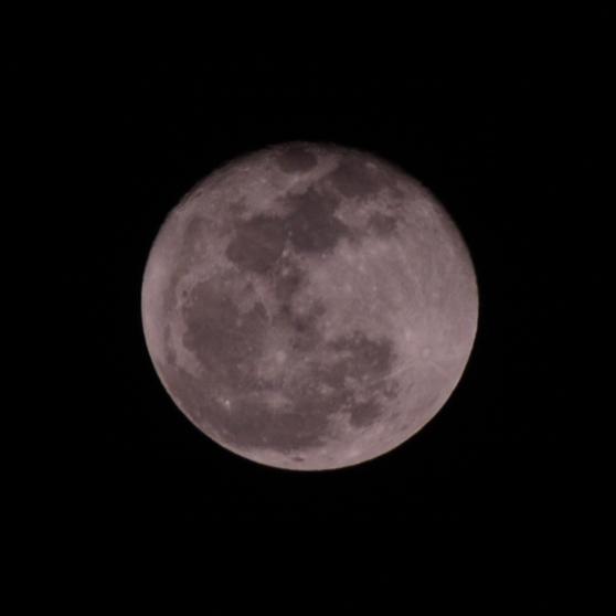20150205_moon_01