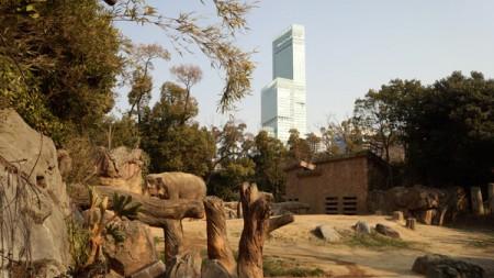 天王寺動物園(3)