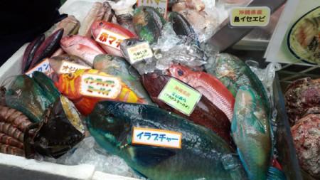 okinawa_06
