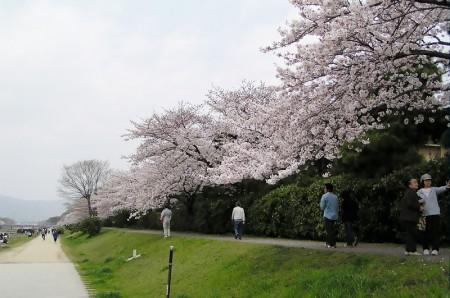 rakuhoku_04