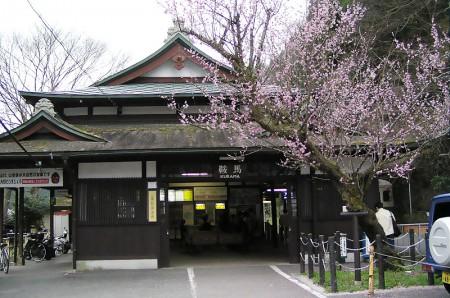 rakuhoku_12